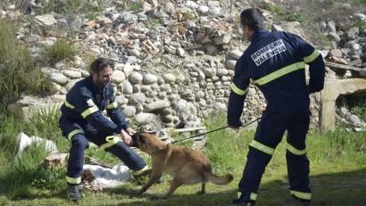 unidad-canina-bomberos-valenci